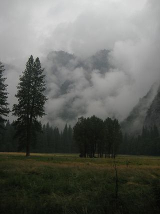 Yosemite Rain low res