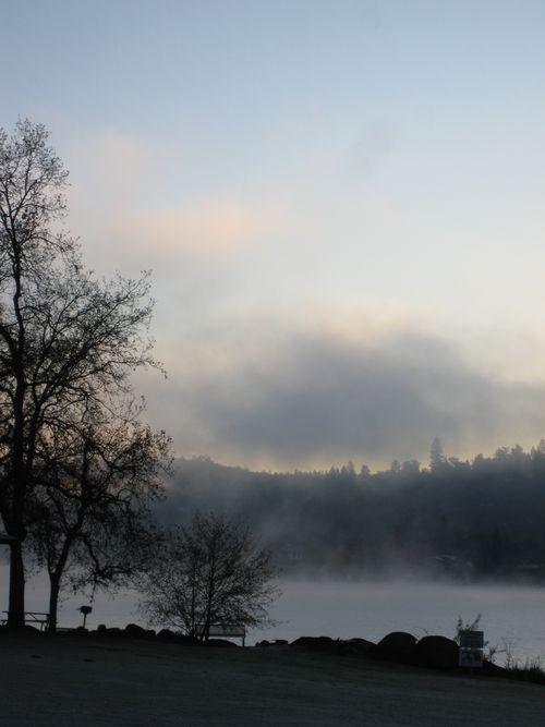 LWW Morning Fog 2