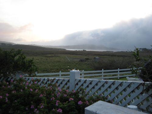 Mission Ranch Pasture