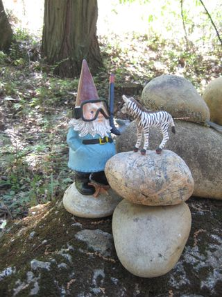 Forest Walk Gnome