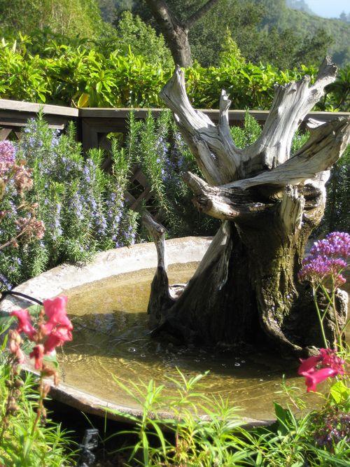 Big Sure Ventana Fountain#2