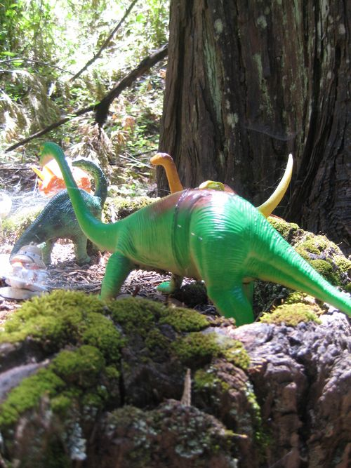 Forest Walk Dino Close up