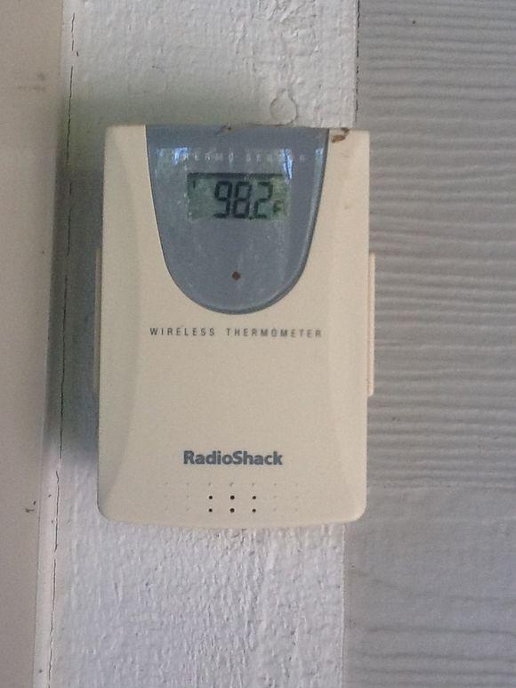 Summer Shade-98 degrees?